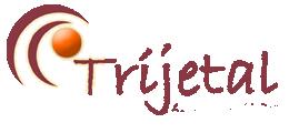 Trijetal: Gezinscoach - Talentenanalist - Psycholoog